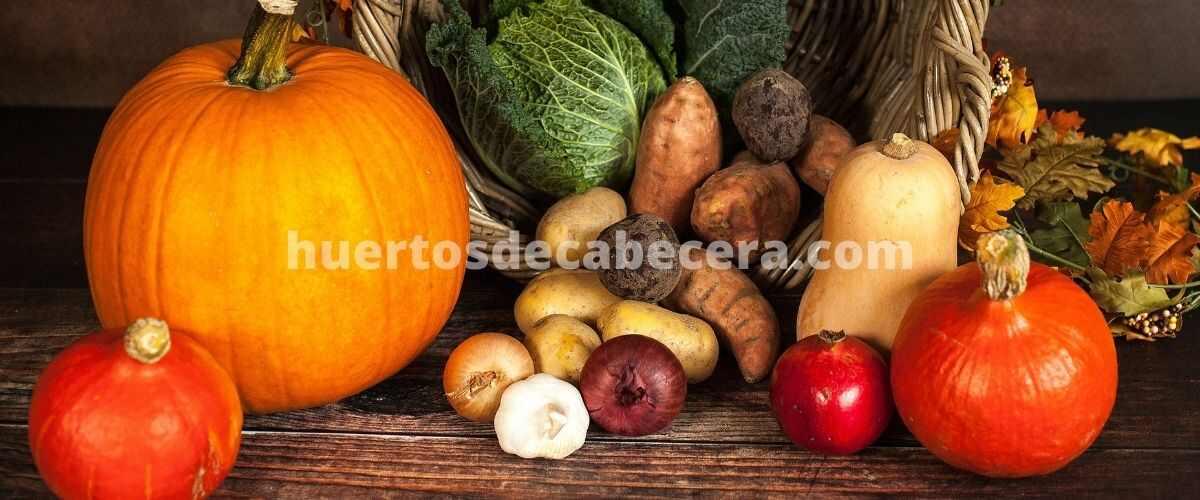 Huesca clanes huertosdecabecera.com