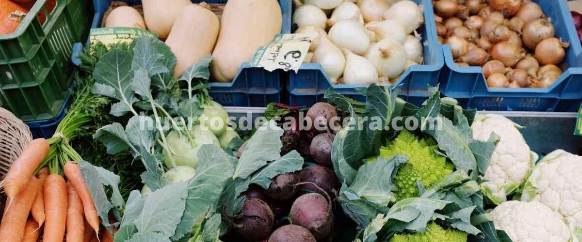 Lugo clanes huertosdecabecera.com