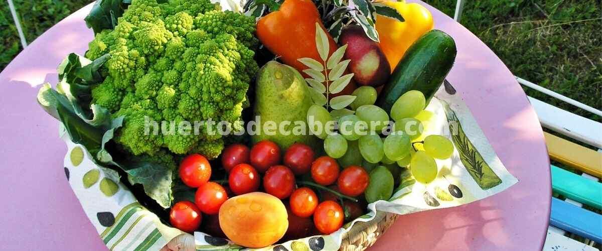 Murcia clanes huertosdecabecera.com