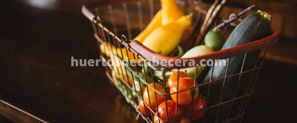 Pontevedra clanes huertosdecabecera.com