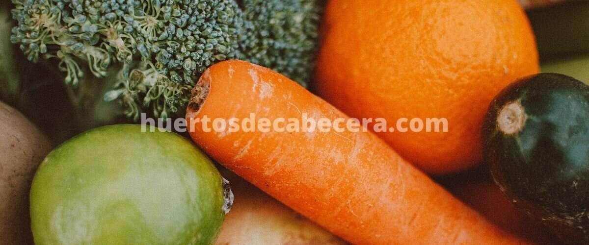 Salamanca clanes huertosdecabecera.com