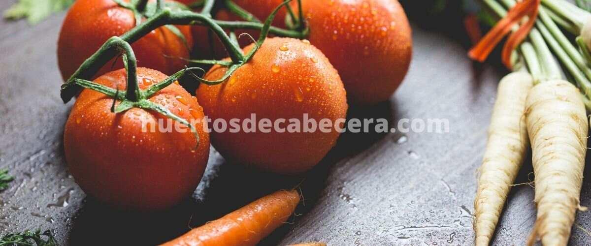 Segovia clanes huertosdecabecera.com