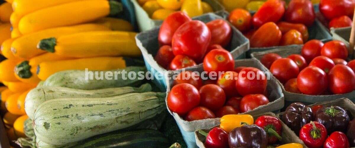 Sevilla clanes huertosdecabecera.com